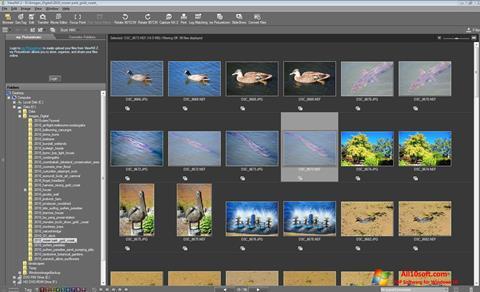 스크린 샷 ViewNX Windows 10